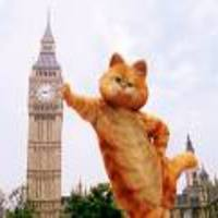 Garfield_is_the_best____